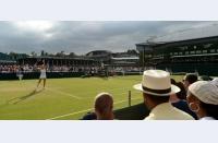 Turneul premierelor: Monica Niculescu o oprește pe Cepelova, se alătură Irinei în turul al treilea la Wimbledon